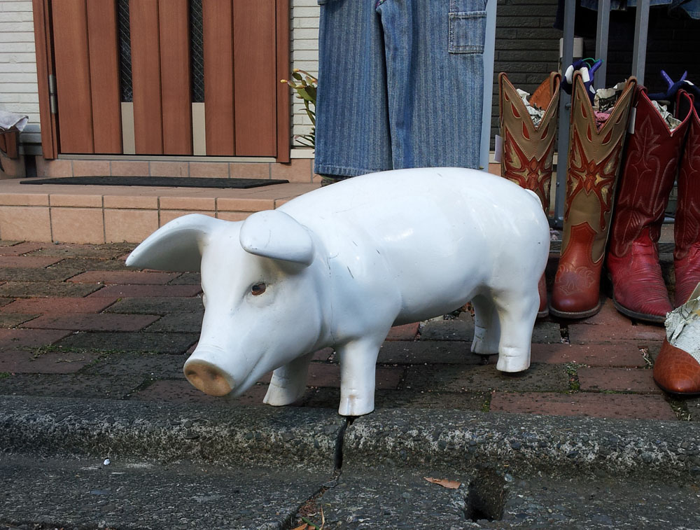Small pig statue at a second-hand boutique in the backstreets of Futako-Tamagawa - Jan. 12, 2014